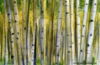 gabys_palette_gabriele_schech_music_makes_pictures_starwood_in_aspen__47c1a5a2bc8fa